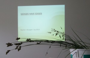 Sedge Day