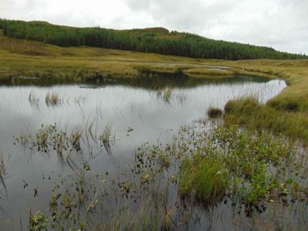Loch Vidigill
