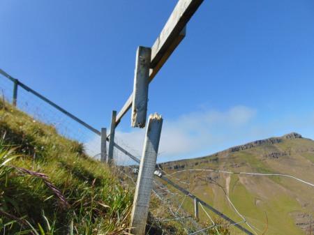 Site 4 RU divide fence damage (2)LR